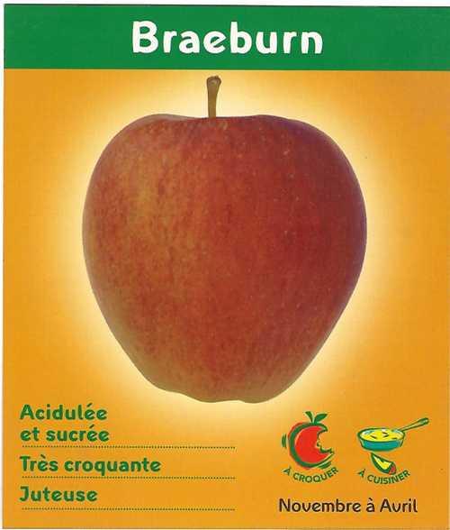 Pommes Braeburn braeburnid