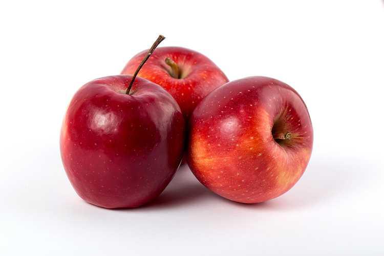 Pommes Elsar 0