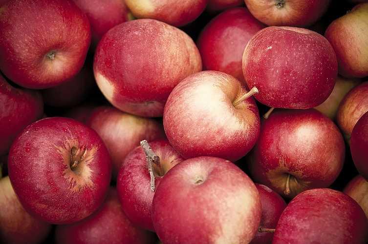 Pommes issues de l''agriculture raisonnée 0